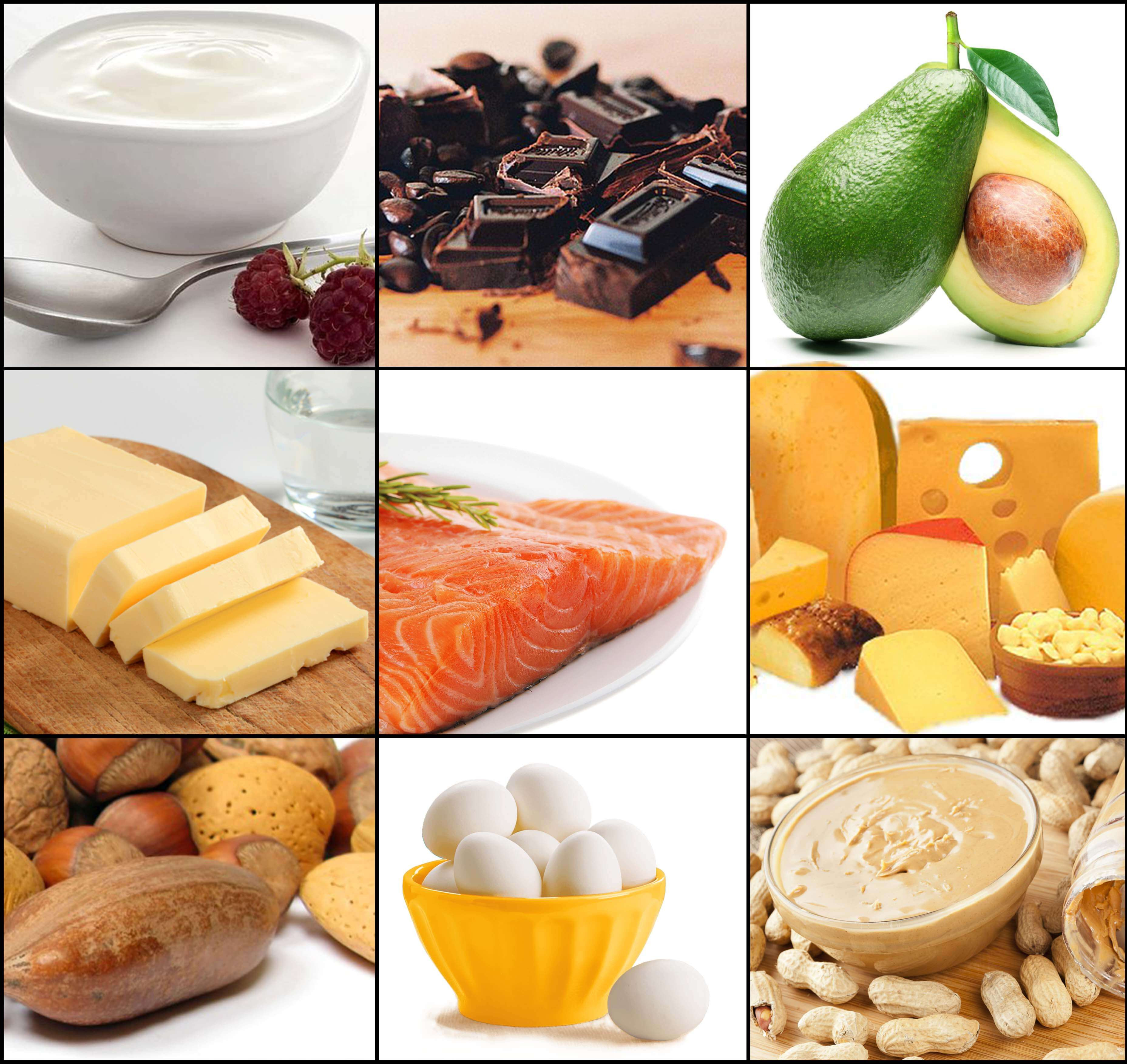 Healthy Fat Snacks  Healthy Fatty Foods that keep you fit