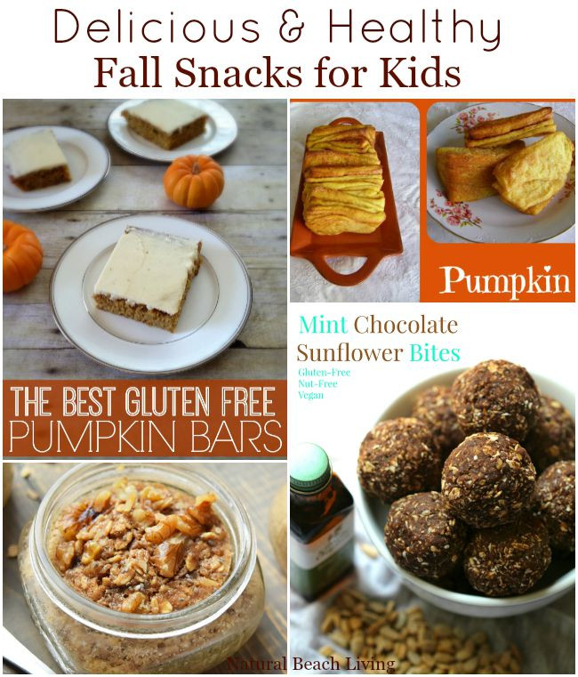 Healthy Snacks For Adults  Healthy Fall Snacks for Kids Natural Beach Living