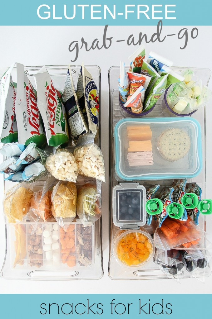 Healthy Snacks For Kids To Take To School  Gluten Free Grab and Go After School Snacks