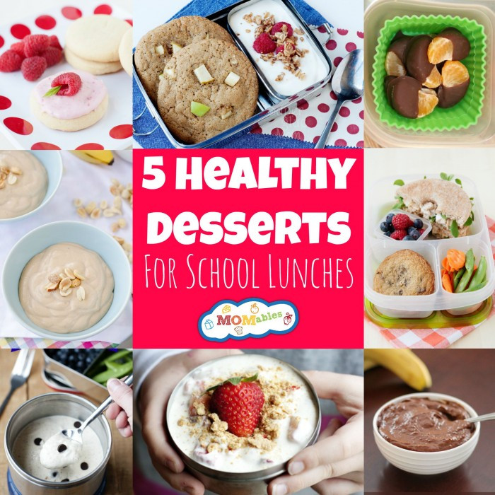 Healthy Store Bought Desserts  5 Healthy Desserts for School Lunches MOMables
