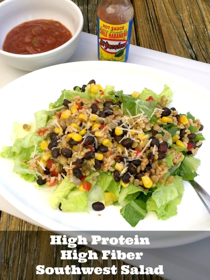 High Fiber Recipes For Weight Loss  Best 25 Lean protein meals ideas on Pinterest
