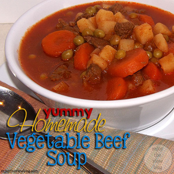Homemade Beef Vegetable Soup  Yummy Homemade Ve able Beef Soup