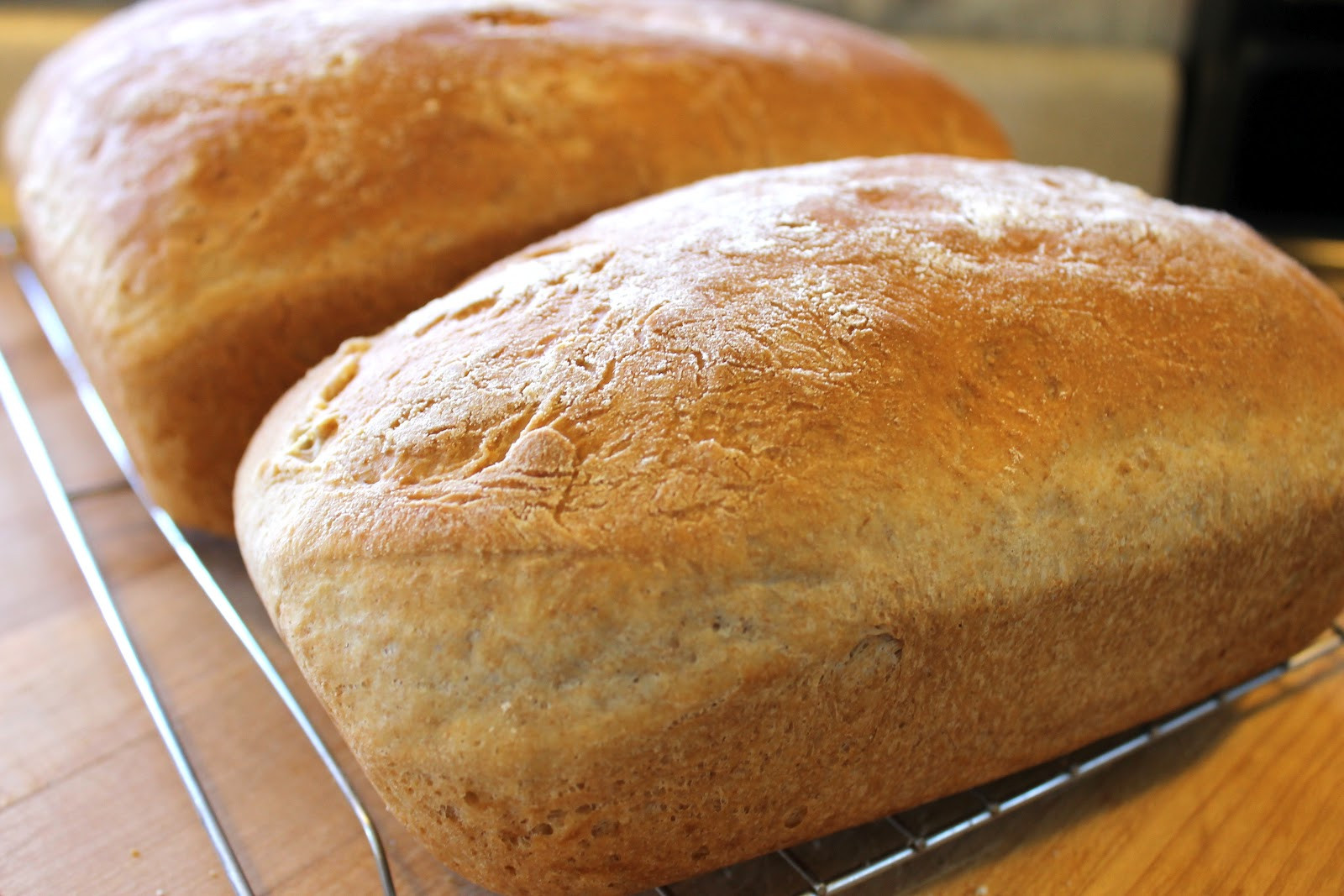 Homemade Bread Recipe  Bread Recipes Bing images