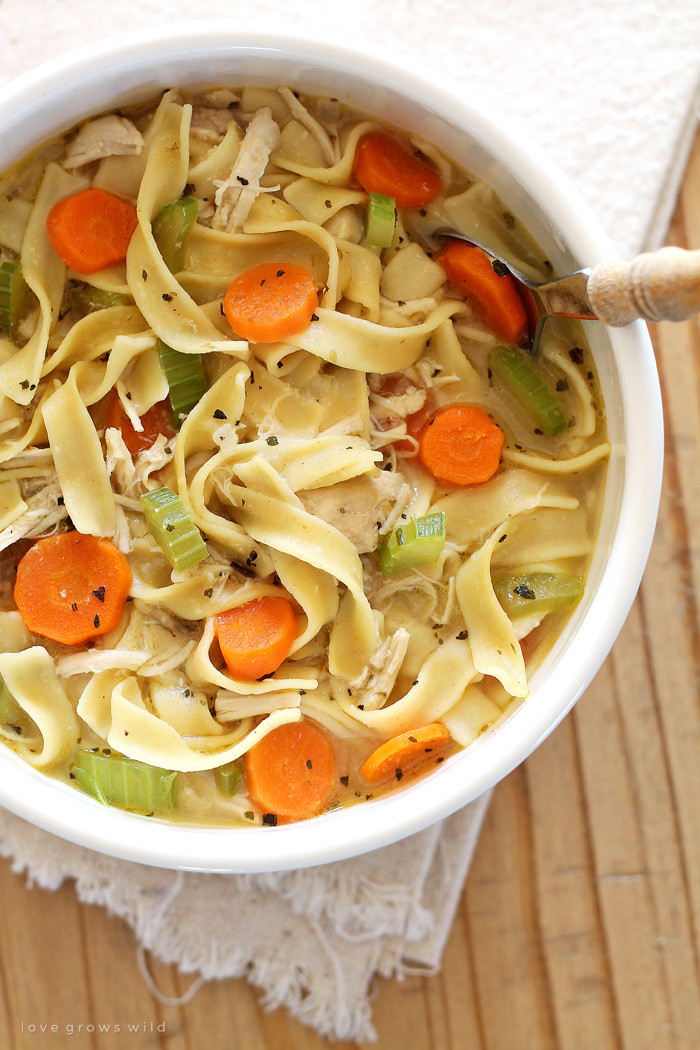 Homemade Chicken And Noodles  Quick and Easy Chicken Noodle Soup Love Grows Wild