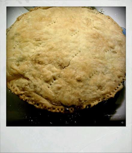 Homemade Chicken Pot Pie Crust  Homemade Chicken Pot Pie Crust and all