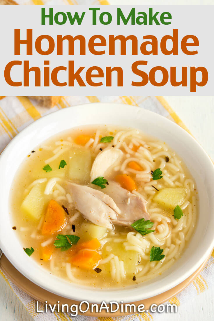 Homemade Chicken Soup Recipe  Homemade Chicken And Turkey Soup Recipes Living on a Dime
