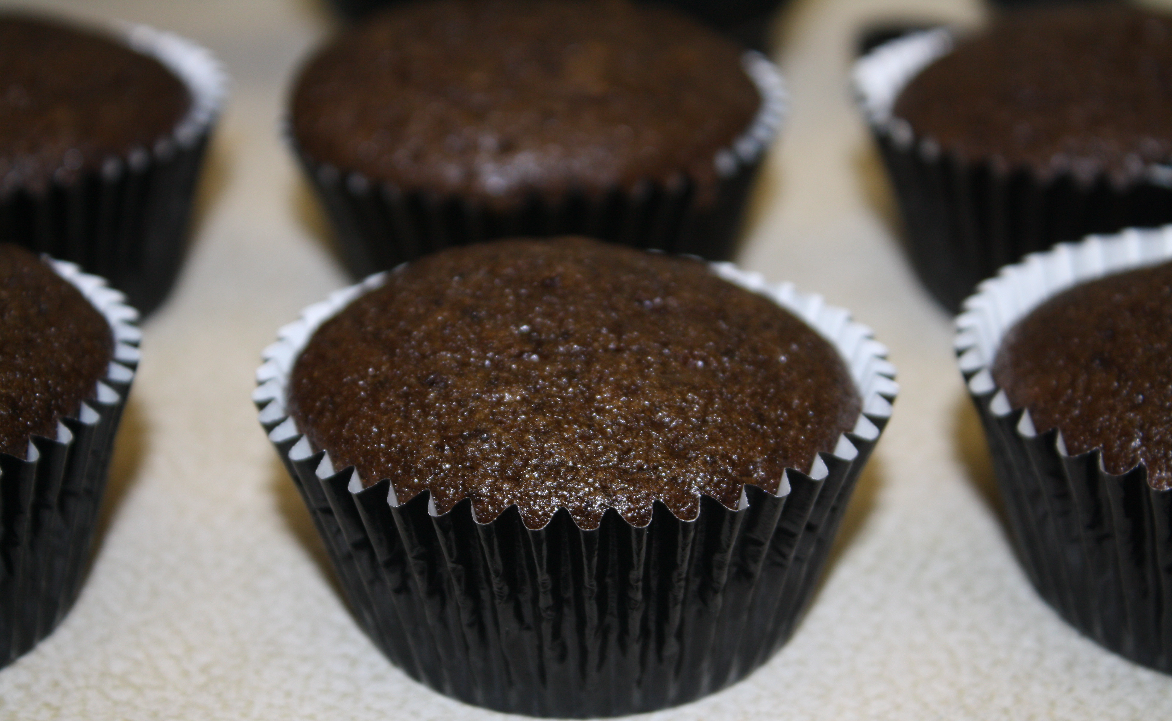 Homemade Chocolate Cupcakes  Incredibly Easy & Moist Chocolate Cupcakes – The Quotable