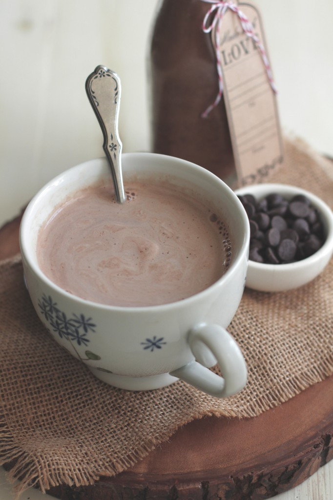 Homemade Hot Chocolate Mix  DIY Homemade Hot Chocolate Mix Without Refined Sugar or