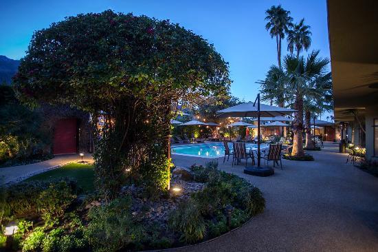 Hotels Palm Dessert Ca  Desert Riviera Hotel UPDATED 2017 Prices & Reviews Palm