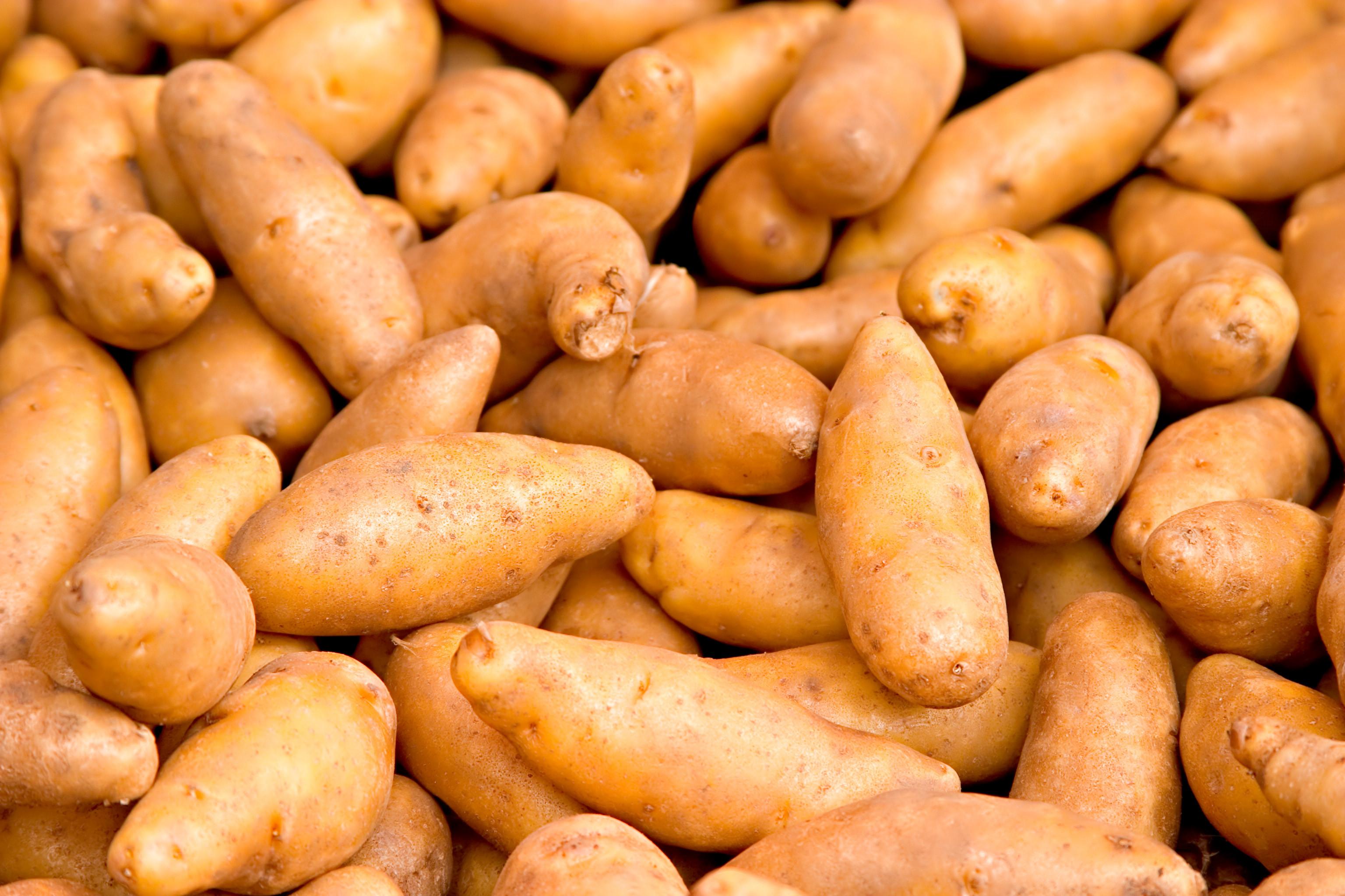 How Long To Boil A Potato  Sweet Potatoes How Long To Boil Sweet Potatoes