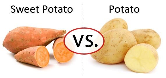 How Many Carbs In A Baked Potato  Sweet Potato Vs Regular Healthiest Potato