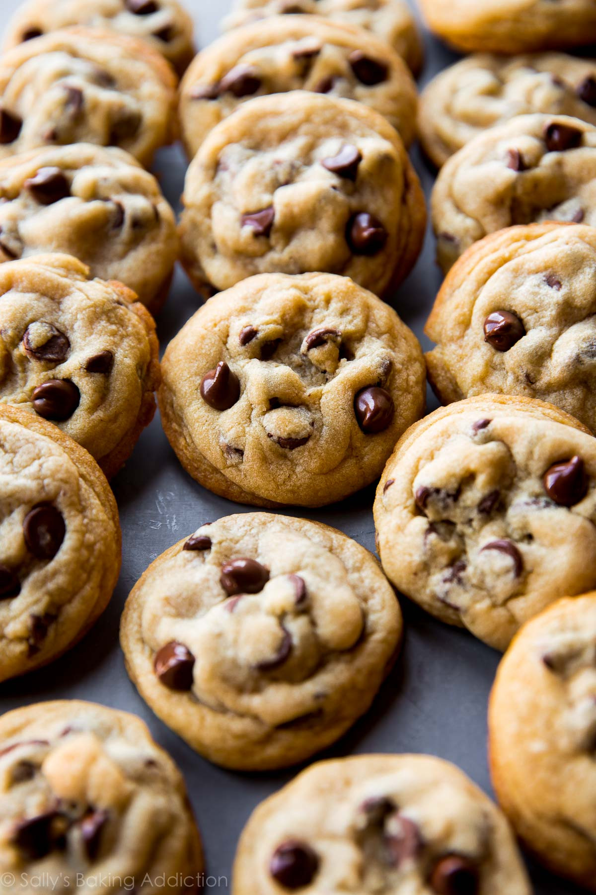 How To Bake Chocolate Chip Cookies  The Best Soft Chocolate Chip Cookies Sallys Baking Addiction
