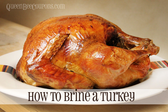 How To Brine A Turkey For Thanksgiving  Best Turkey and Ham prices includes Costco Plus pumpkin
