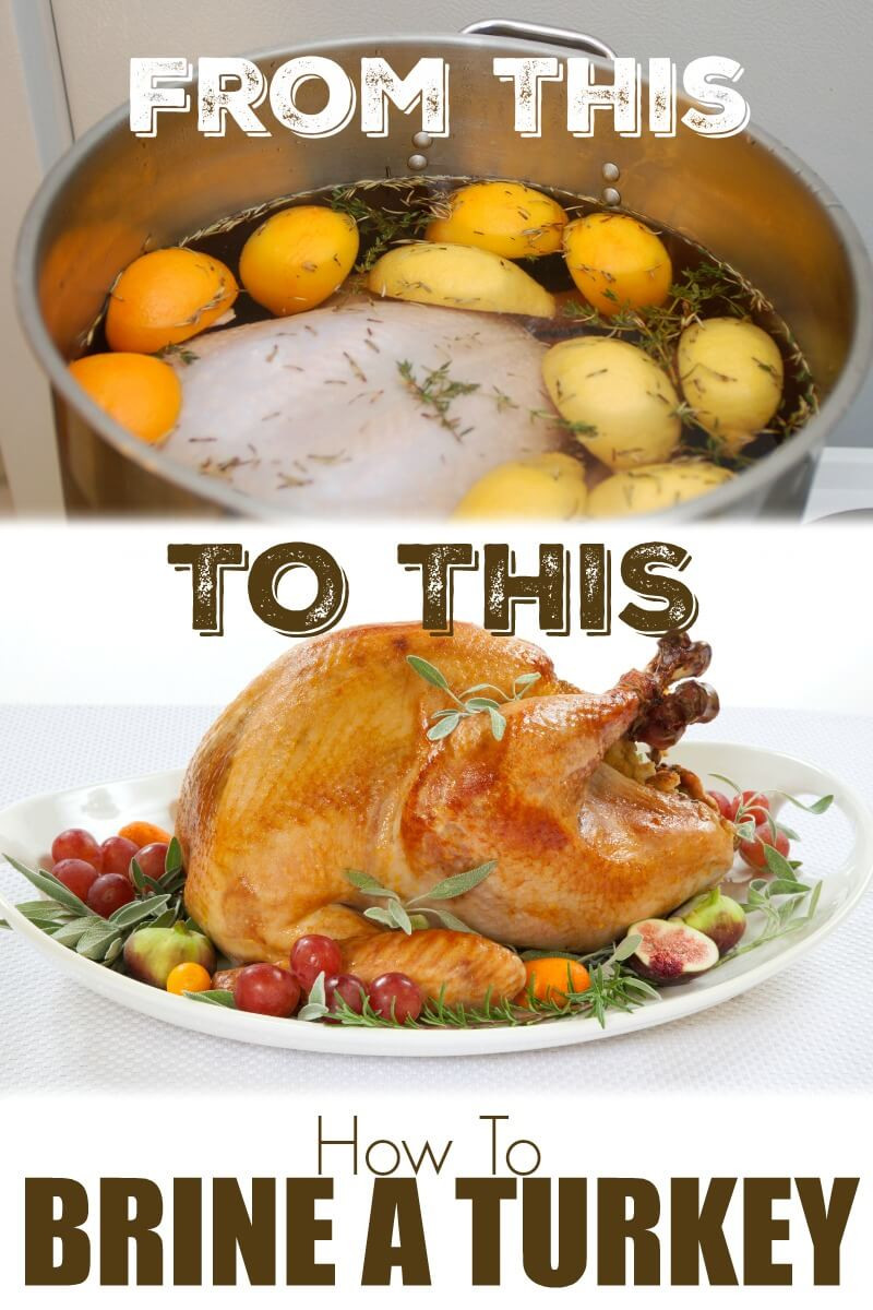 How To Brine A Turkey For Thanksgiving  How to Brine a Turkey What is a Brine Brine Recipe for