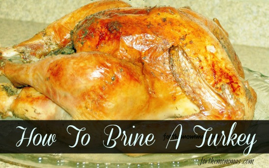 How To Brine A Turkey For Thanksgiving  How To Brine a Turkey