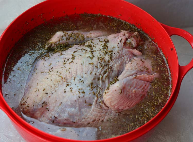 How To Brine A Turkey For Thanksgiving  Brined and Roasted Turkey