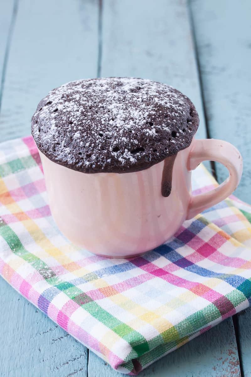 How To Make A Mug Cake  How to Make a Mug Cake Plus 20 Recipes DIY Candy