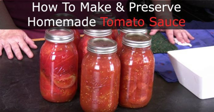 How To Make Homemade Tomato Sauce  How To Make And Preserve Homemade Tomato Sauce