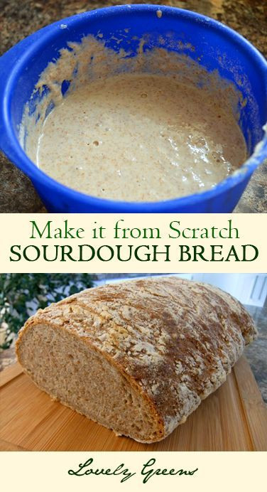 How To Make Sourdough Bread Starter  How to Make Sourdough Starter