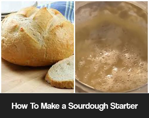 How To Make Sourdough Bread Starter  How To Make a Sourdough Starter And Bread Mental Scoop