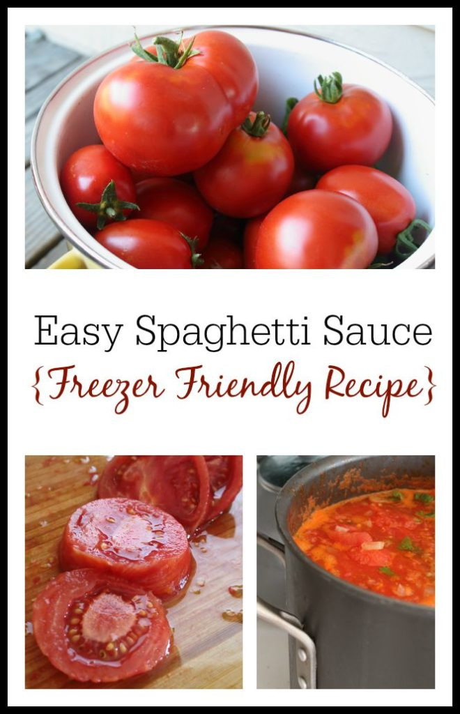 How To Make Tomato Sauce From Fresh Tomatoes  How to Make Spaghetti Sauce from Fresh Tomatoes Freezer