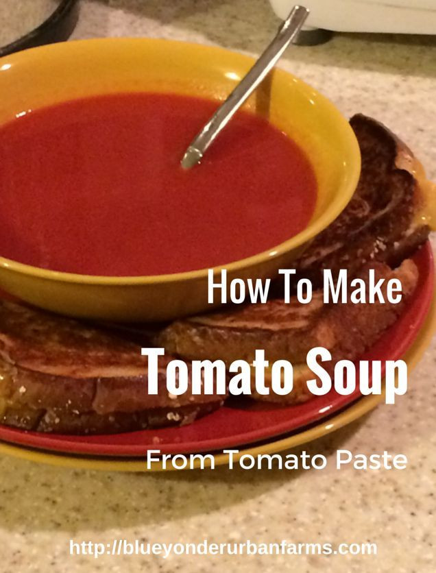 How To Make Tomato Sauce From Tomato Paste  How To Make Tomato Soup From Tomato Paste