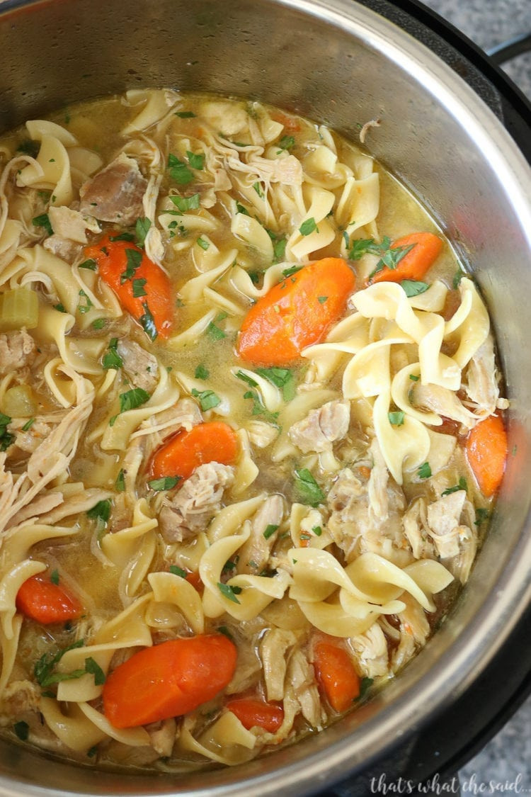 Instant Pot Chicken Noodle Soup  Instant Pot Chicken Noodle Soup That s What Che Said