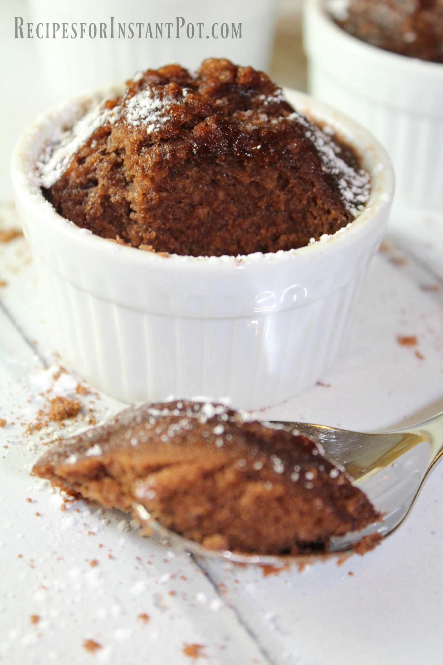 Instant Pot Chocolate Lava Cake  Molten Chocolate Mini Lava Cake Instant Pot
