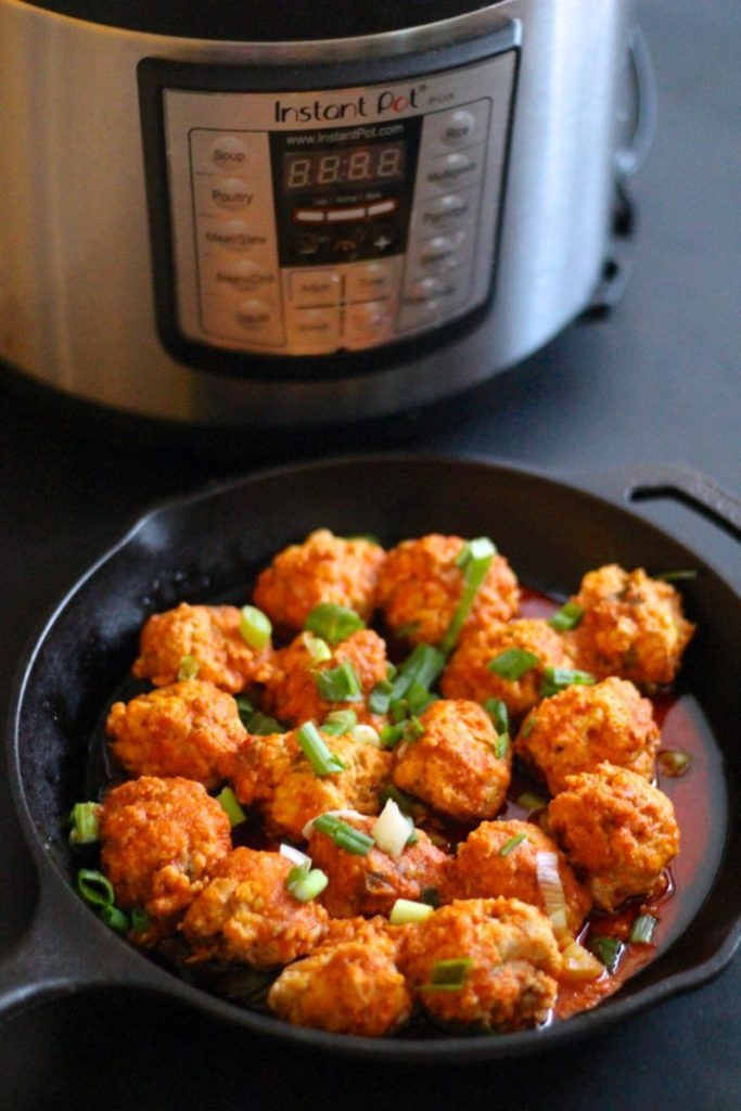 Instant Pot Low Carb Recipes  40 Keto Low Carb Instant Pot Recipes Oh Snap Let s Eat
