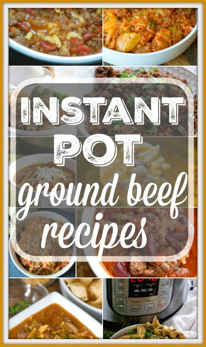 Instant Pot Recipes Beef  Instant Pot Ground Beef Recipes · The Typical Mom