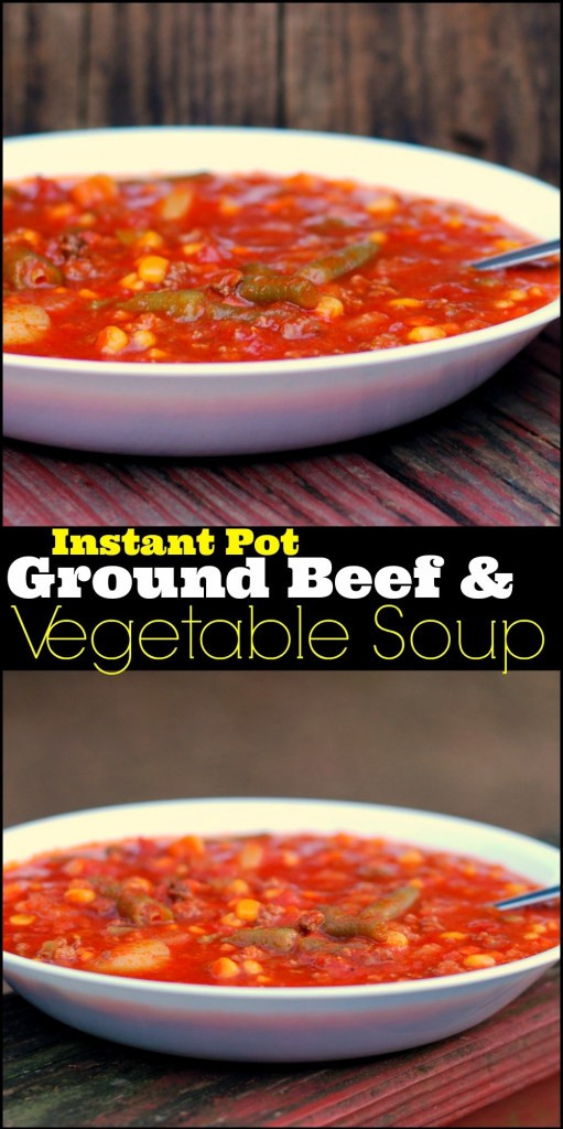 Instant Pot Recipes Ground Beef  Instant Pot Ground Beef & Ve able Soup Aunt Bee s Recipes