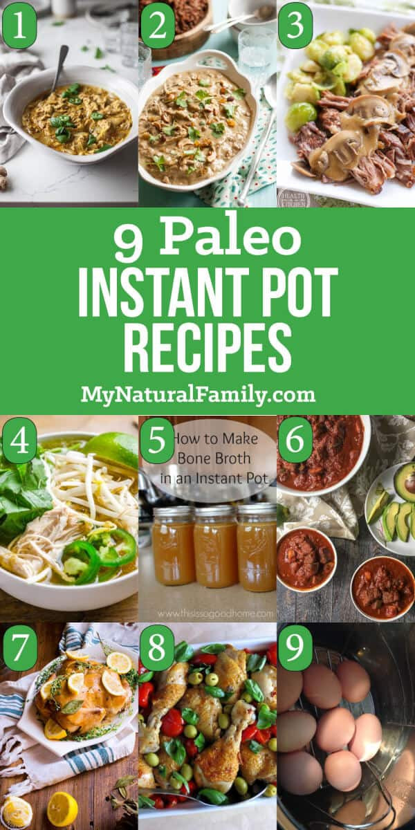 Instant Pot Recipes Paleo  9 of the Best Ever Paleo Instant Pot Recipes Electric