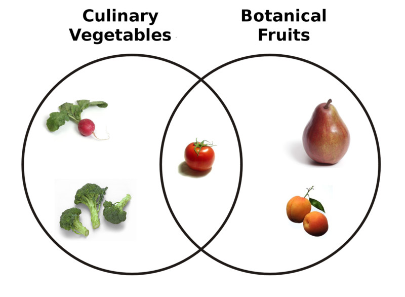 Is A Potato A Fruit Or Vegetable  What s the Difference Between Fruits and Ve ables