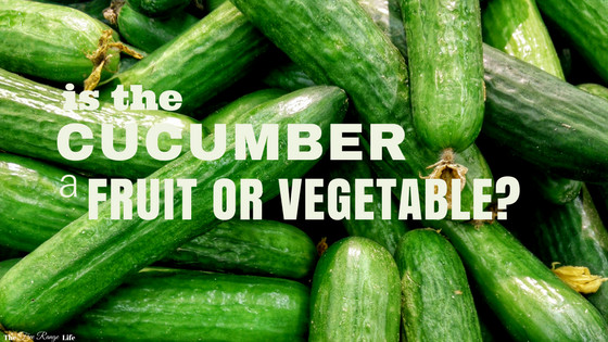 Is A Potato A Fruit Or Vegetable  Is a Cucumber a Fruit or a Ve able