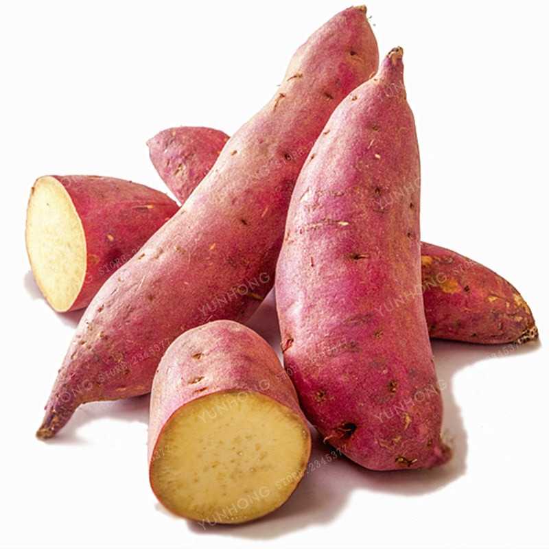 Is A Potato A Fruit Or Vegetable  Sweet Potato Seeds Ve ables Seeds Fresh Food Fruit And