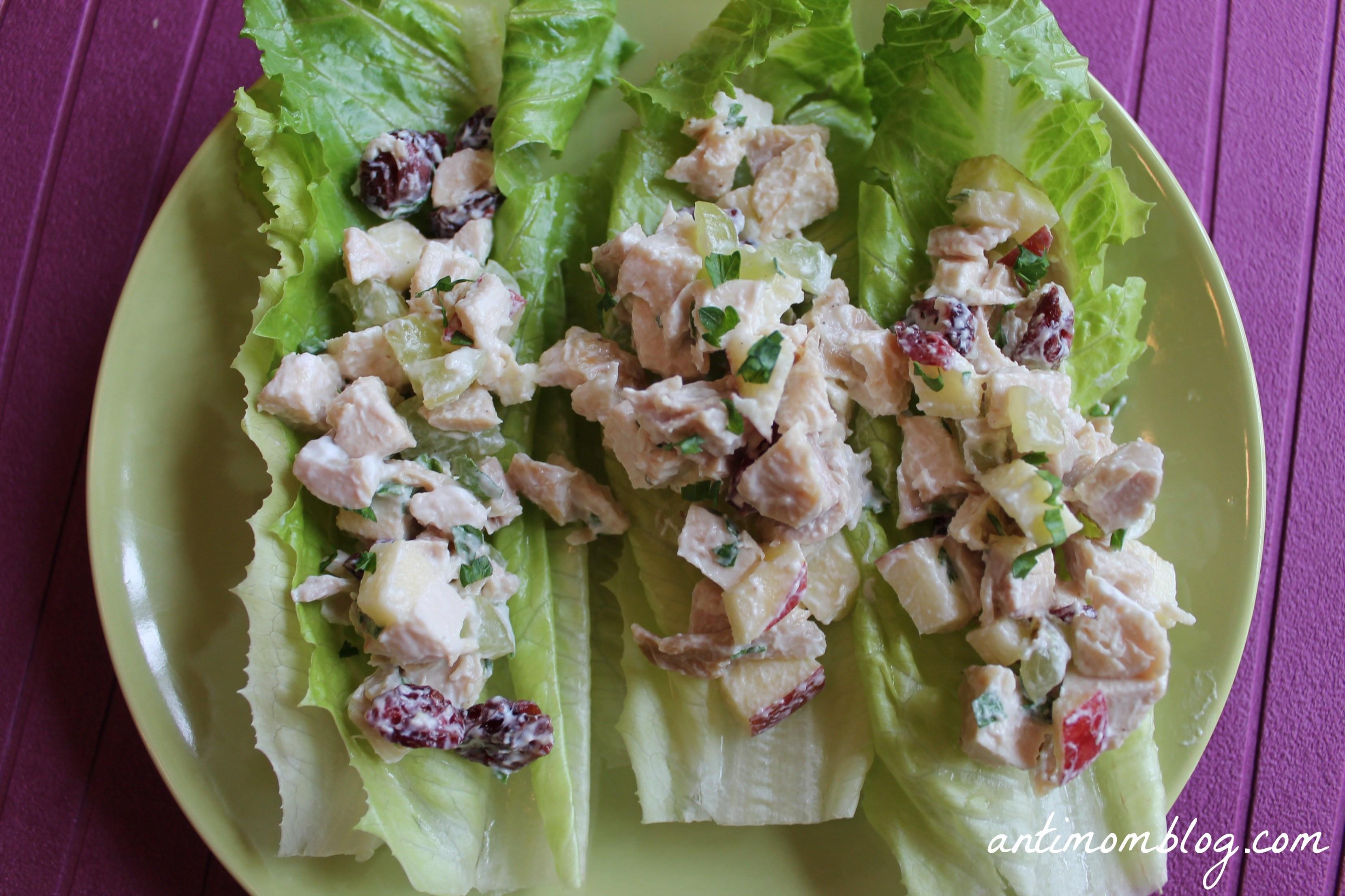 Is Chicken Salad Healthy  Healthy Chicken Salad Recipe The Anti Mom Blog
