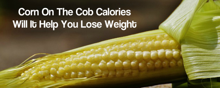 Is Corn Good For Weight Loss  Corn The Cob Calories – Will It Help You Lose Weight