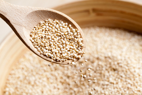 Is Quinoa Kosher For Passover  Jewcy