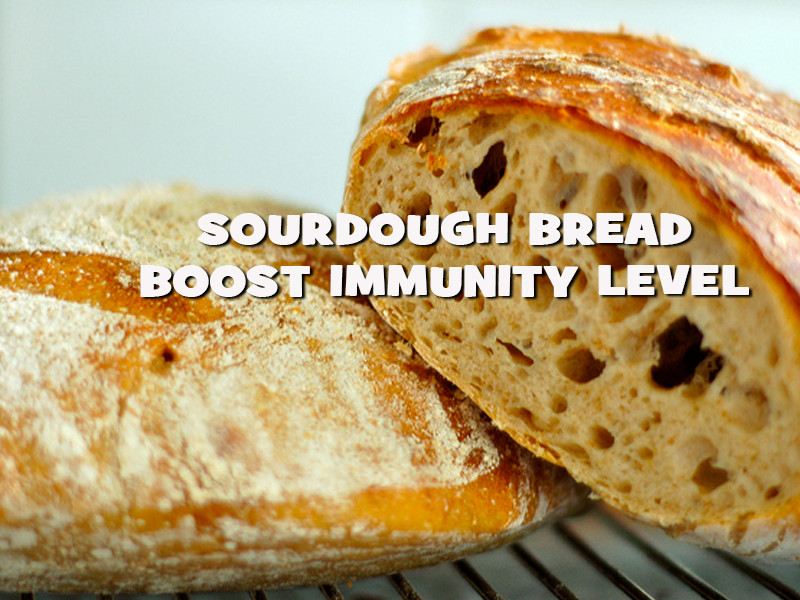 Is Sourdough Bread Healthy  Health Benefits Sourdough Bread Nutrition Inside