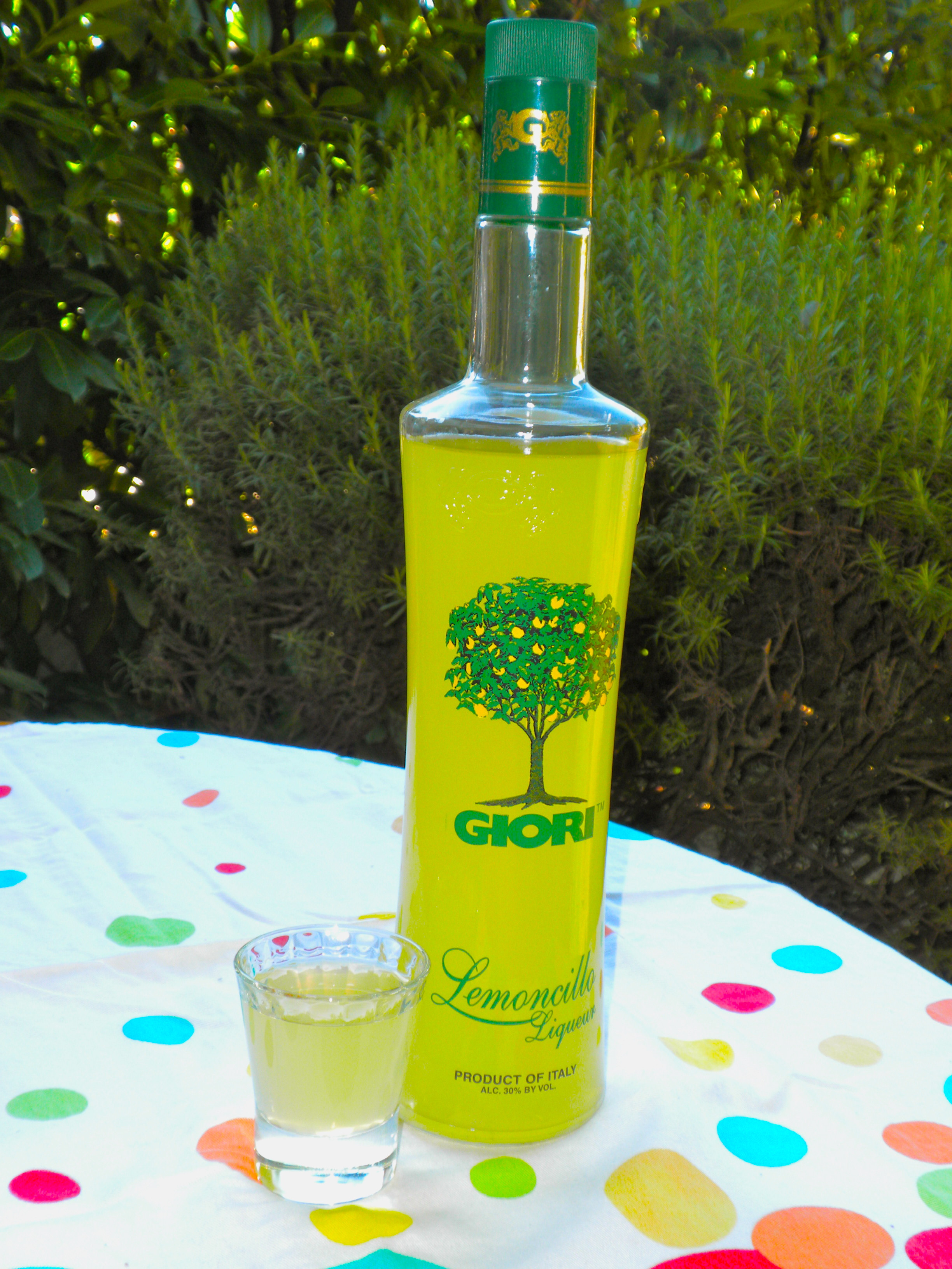 Italian Alcoholic Drinks  What Italians Drink Limoncello or Lemoncillo