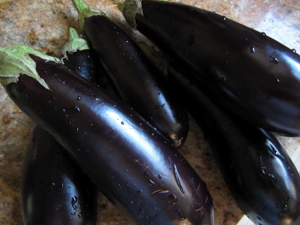 Italian Term For Eggplant  Pickled Eggplant Pickled Aubergines Christina s Cucina