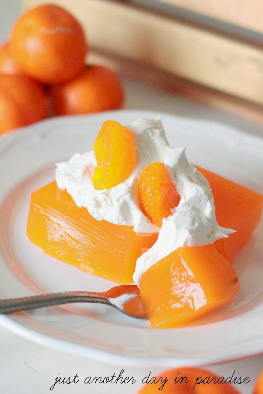 Jello Pudding Desserts  Larissa Another Day Orange Dream Jello Dessert