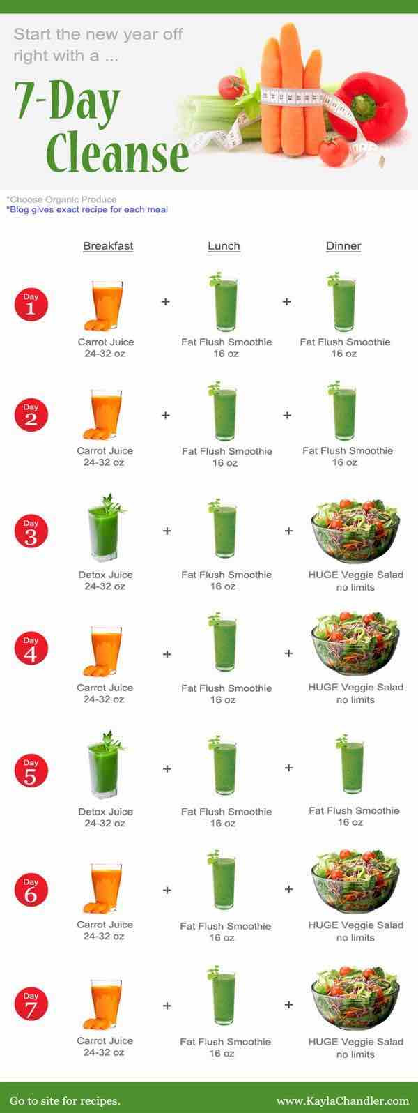 Juice Diet Recipes For Weight Loss  Juicing Recipes for Detoxing and Weight Loss MODwedding