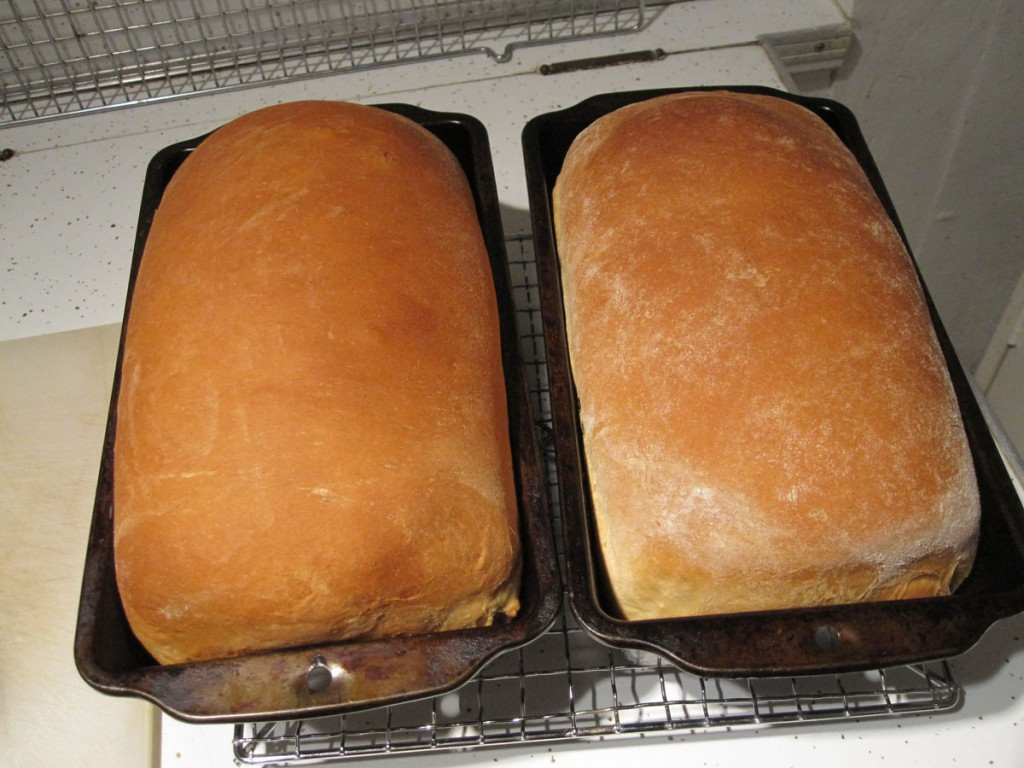 Kitchenaid Bread Recipe  How To Bake Bread With Your KitchenAid Mixer
