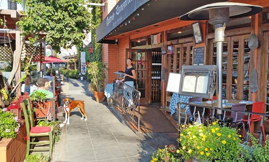 La Jolla Dinner  Restaurants in La Jolla Shores Part 2 Authentic Luxury
