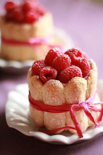 Lady Fingers Dessert Recipes  17 Best images about Ladyfinger Recipes on Pinterest