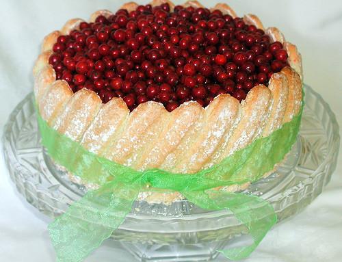 Ladyfinger Dessert Recipes  Joy of Desserts Dessert Recipe Ladyfingers