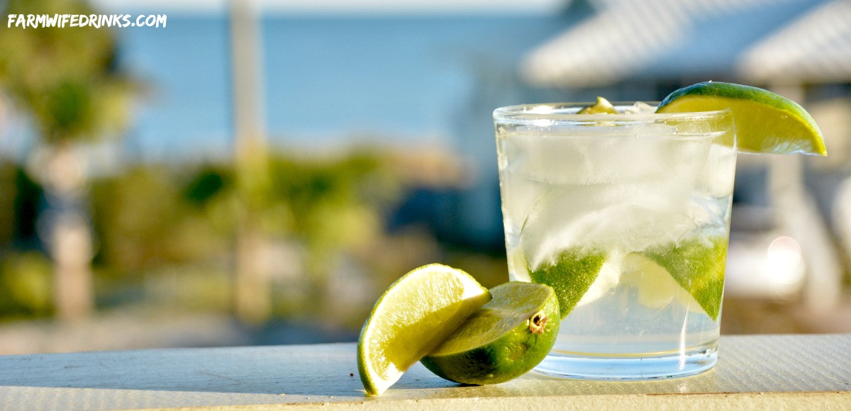 Lime Vodka Drinks  Vodka and Club Soda with Lime The Farmwife Drinks