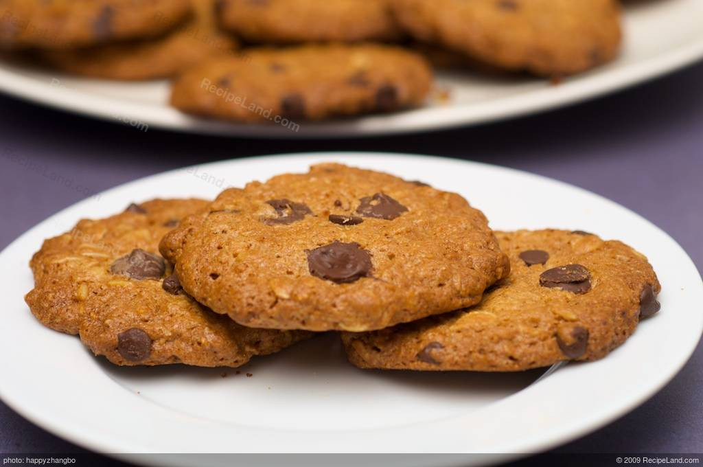Low Calorie Chocolate Chip Cookies  Low Fat and Low Calorie Oatmeal Chocolate Chip Cookies Recipe