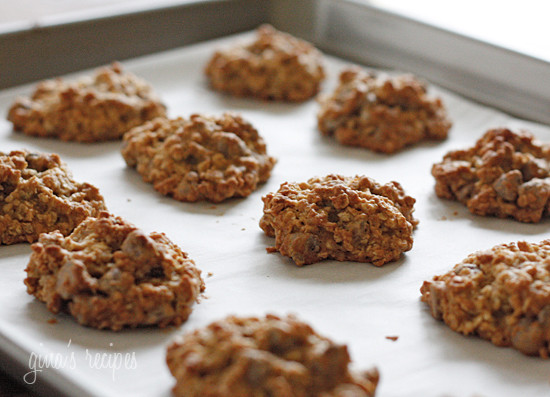 Low Calorie Oatmeal Cookies  Low Fat Chewy Chocolate Chip Oatmeal Cookies